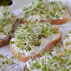 Sajtkrémes-avokádós-csírás szendvics